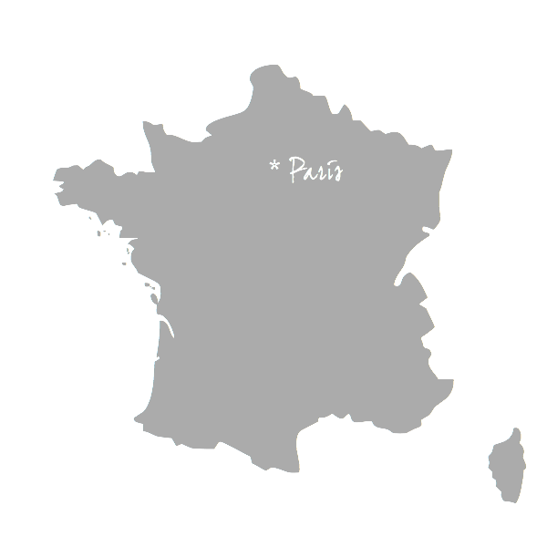 Paris_gris