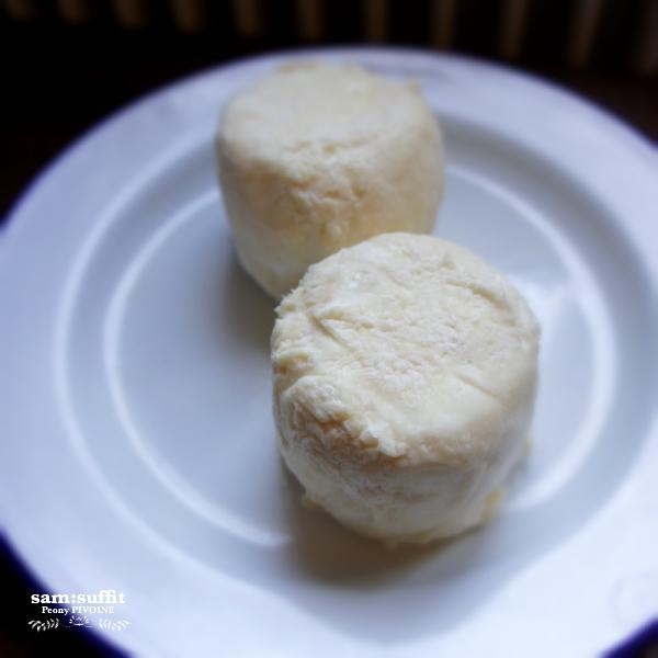 フレッシュ山羊チーズ(fromage de chèvre)